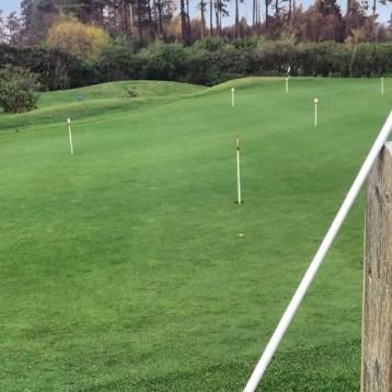 Win a Swing Speed golf training club