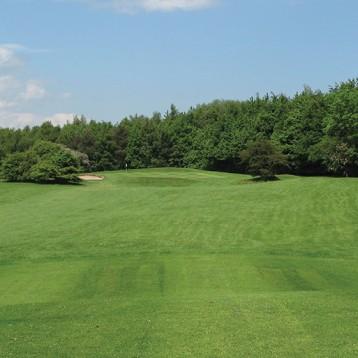 Win golf for four at George Washington Golf Club