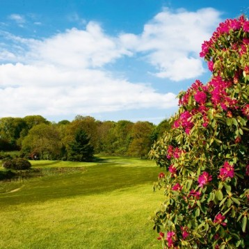 Win golf for four at Bedlingtonshire Golf Club